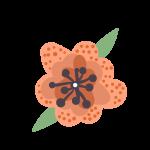 Peach Flower Graphic | ONEPAGEWEBSITE.PRO